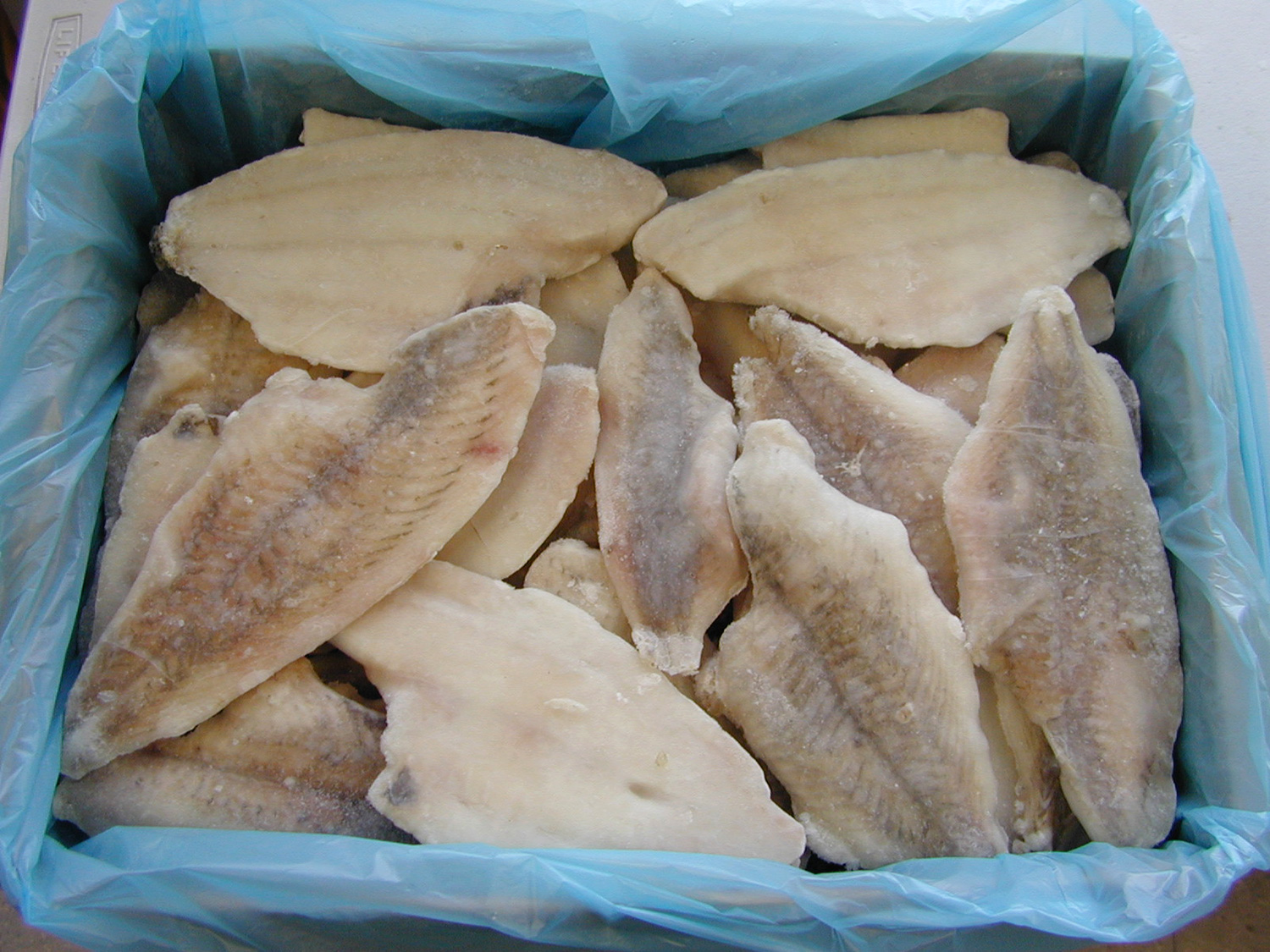 how to cook frozen wild sole fillets