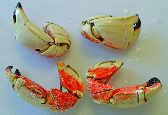 How do you cook jonah crab claws best crab for Triple tail fish recipes