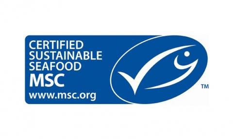 Sustainability | Stavis Seafoods